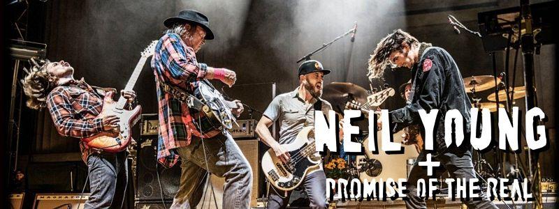 Aranžma Neil Young (prevoz in vstopnica)