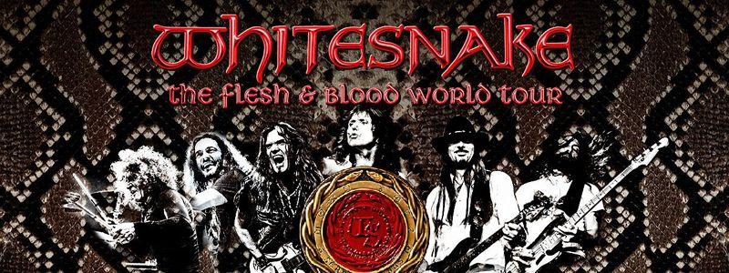 Aranžma Whitesnake (prevoz in vstopnica)